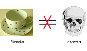 filiżanka i czaszka